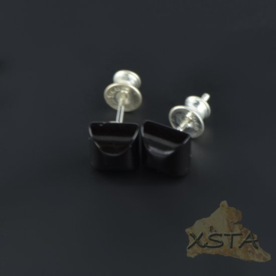 Amber stud earrings with silver