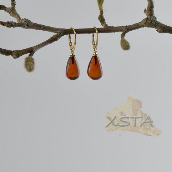 Amber earrings silver-gold metal