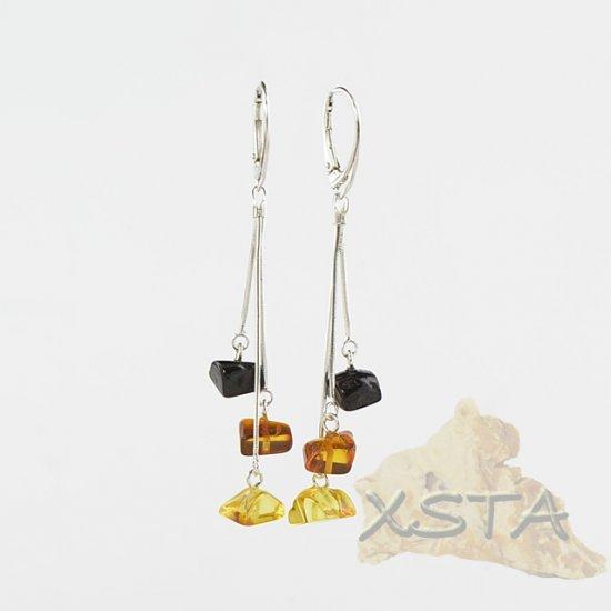 Baltic amber multicolor earrings