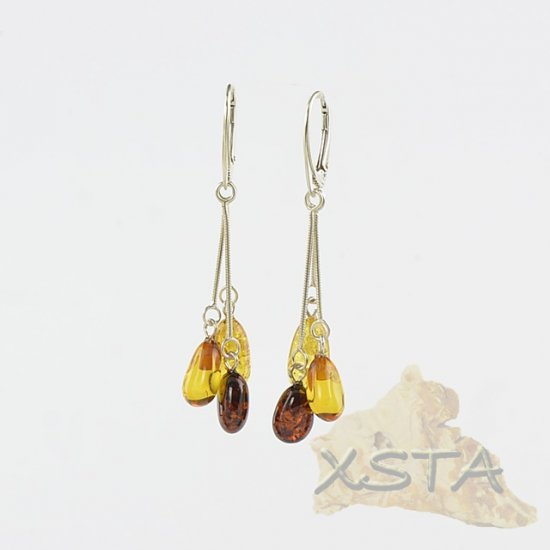 Multicolor Baltic amber earrings