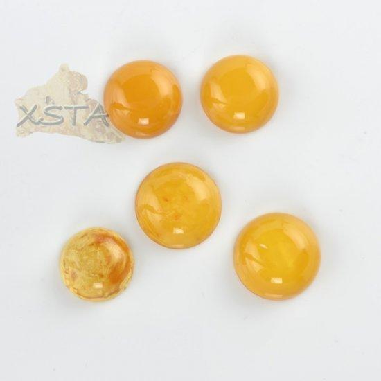 Wholesale amber cabochons 5 units